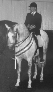 1988 - Ultimado II 1988 Nat Stallion CH and Res Nat Ridden CH
