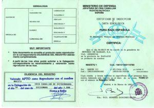 Cria Caballar Cert of Inscription and Genealogy 1- 1997