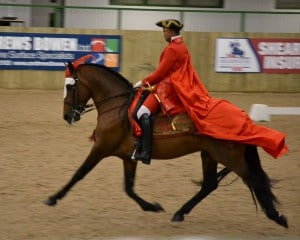 Dressage to Music - Harry and James 1crpd