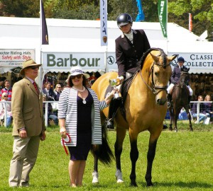 Puma PM at Windsor show 2015-05-17 1st place English class crpd