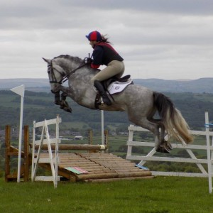2015-05-24 Jet from Hebden Bridge Stud with Taz Cowens, huge jump tiger-trap