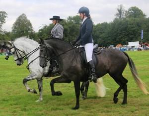 2015-09-05 Paladin and Tiara - Iberian demo at Arlesford show crpd