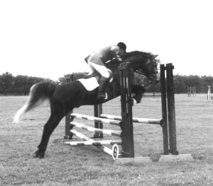 Schehereczar showjump