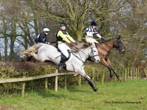 Pink jumping hedge Bedale Hunt Race 2016