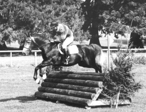 Schehereczar jump woodpile